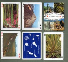Collectible playing cards Canary Islands souvenir